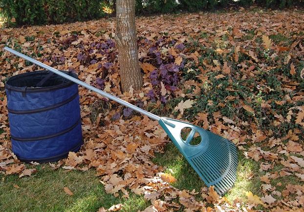Aktive Obst- und Gartenbauvereine im goldenen Herbst