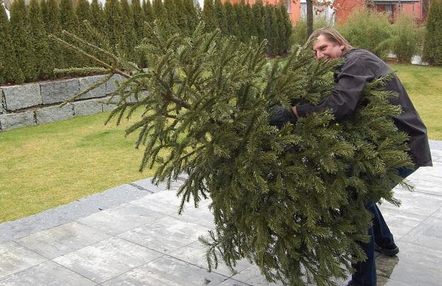Von Hexen, Bubble Ball und Weihnachtsbäumen